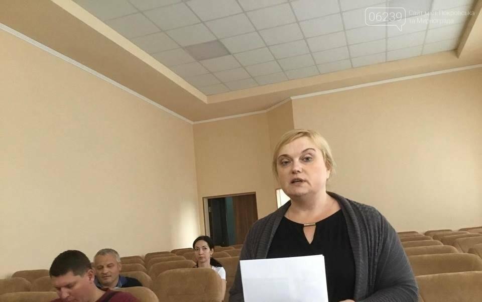 В Покровске продолжаются бурные обсуждения вариантов нового герба и флага , фото-7