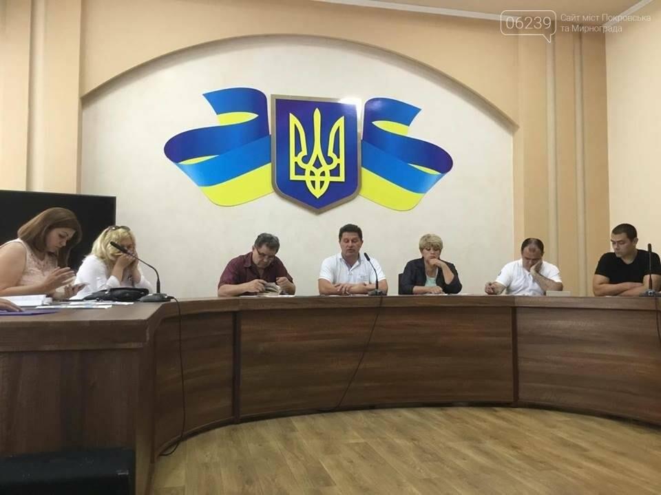 В Покровске продолжаются бурные обсуждения вариантов нового герба и флага , фото-8