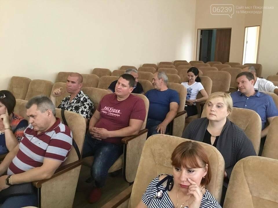 В Покровске продолжаются бурные обсуждения вариантов нового герба и флага , фото-6
