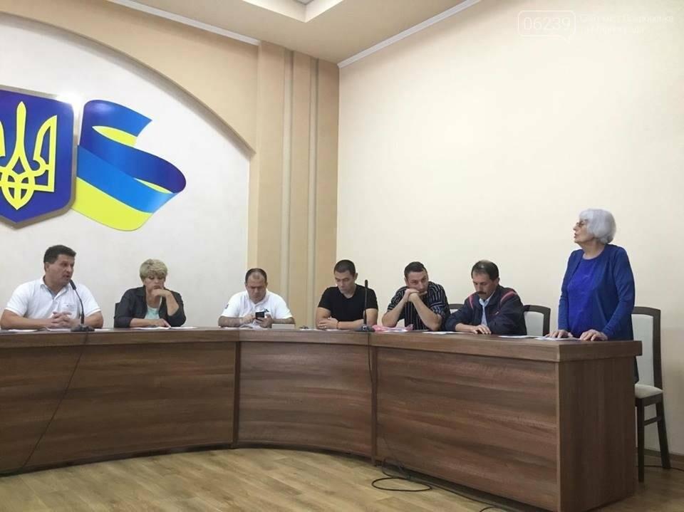 В Покровске продолжаются бурные обсуждения вариантов нового герба и флага , фото-11