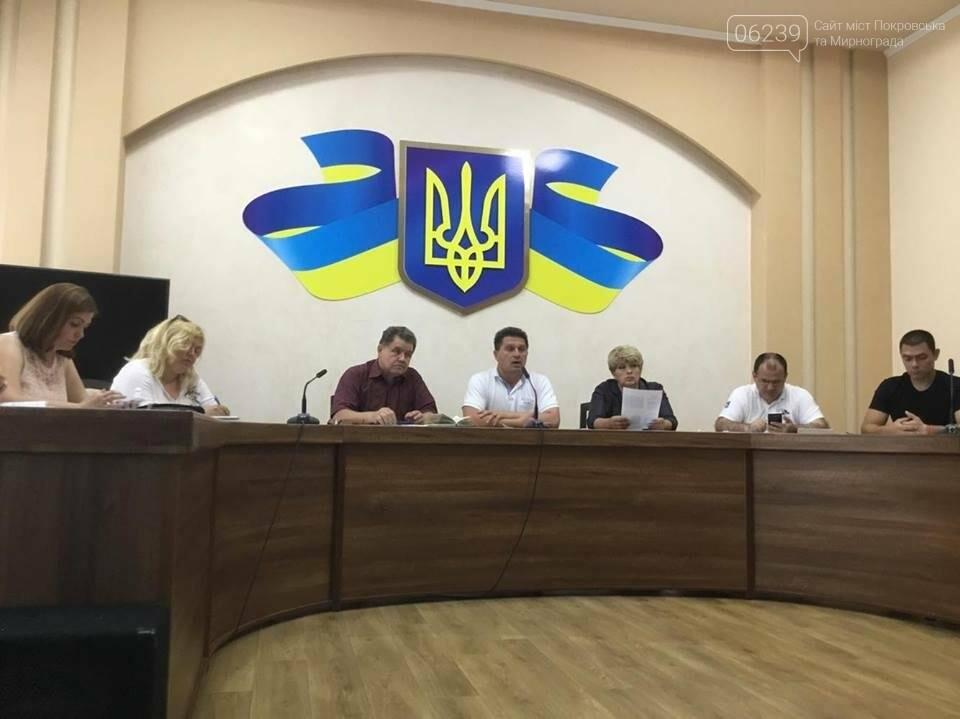 В Покровске продолжаются бурные обсуждения вариантов нового герба и флага , фото-10