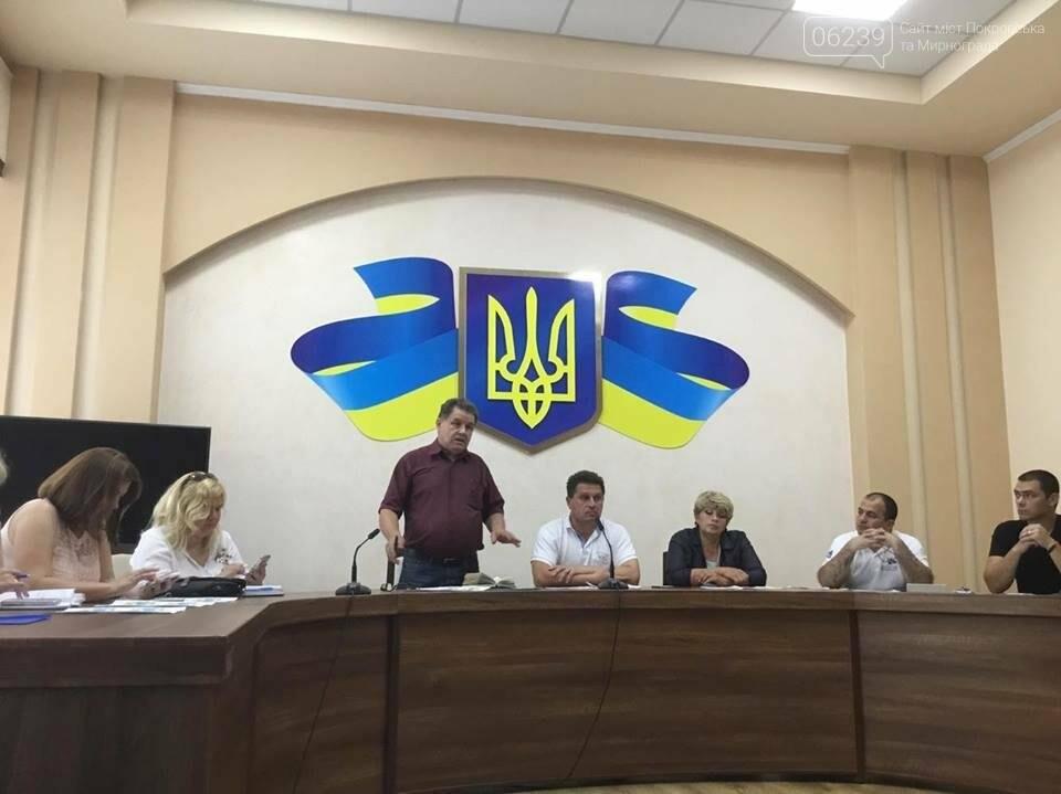 В Покровске продолжаются бурные обсуждения вариантов нового герба и флага , фото-5