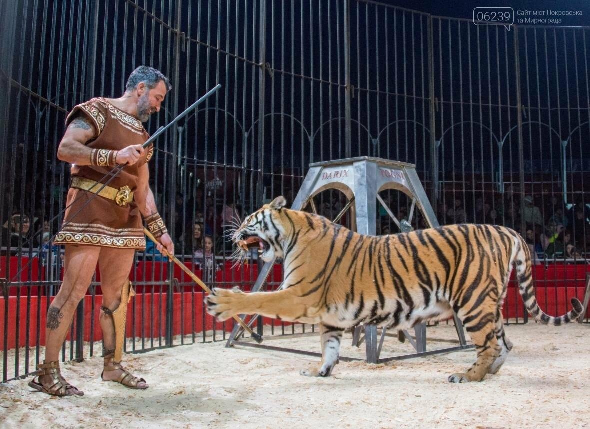 Цирк «Кобзов» привезет Италию в Мирноград!, фото-7