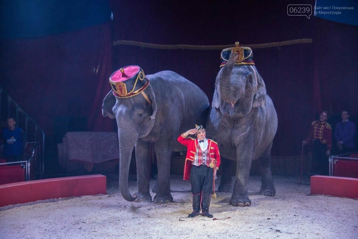 Цирк «Кобзов» привезет Италию в Мирноград!, фото-5