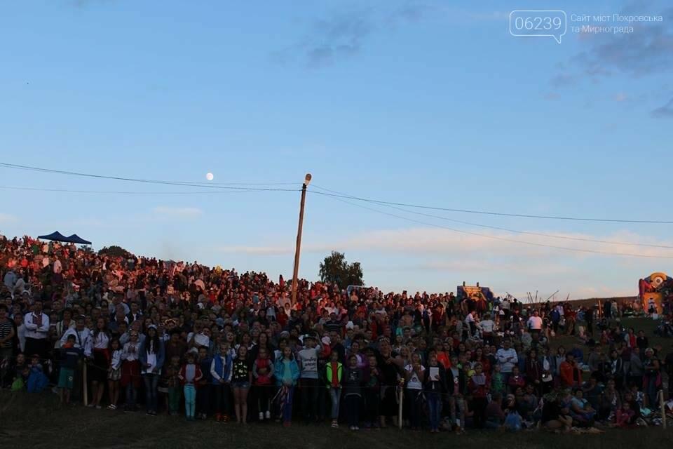 Делегации из Покровска и Мирнограда побывали на празднике Ивана Купала на Житомирщине, фото-2