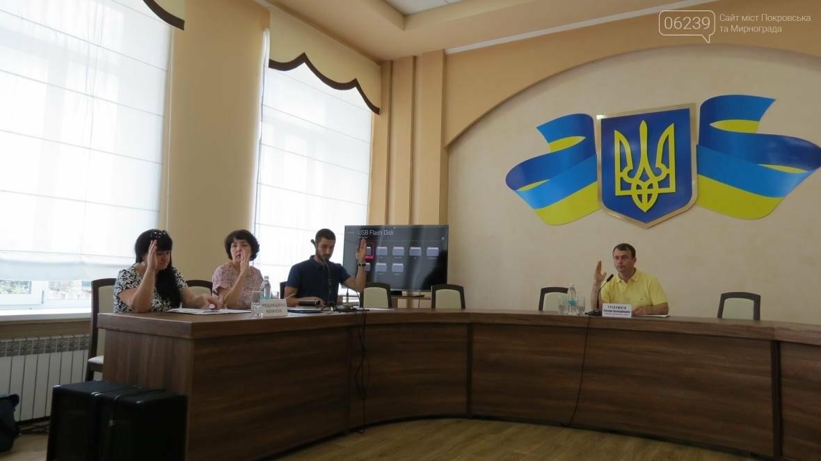 В Покровске депутаты запретили строительство индивидуальных гаражей в жилых кварталах города  , фото-2