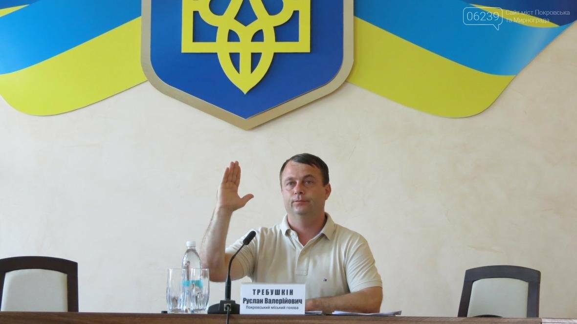 Депутатский корпус Покровска утвердил новый герб и флаг города , фото-5