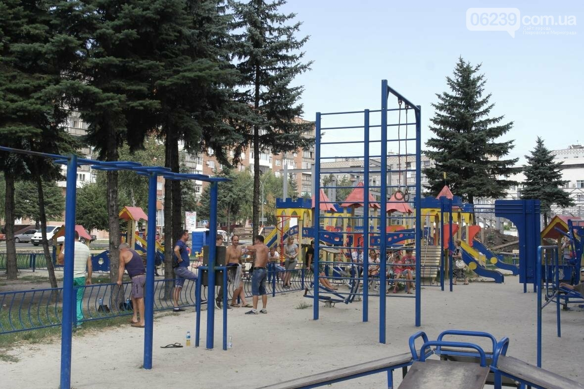 В Покровске прошли соревнования по Street Workout , фото-4