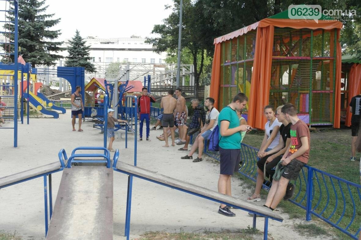 В Покровске прошли соревнования по Street Workout , фото-5