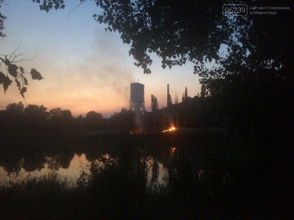 В центре Мирнограда вчера горел сухостой, фото-1