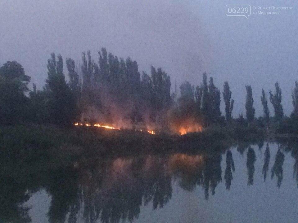 В центре Мирнограда вчера горел сухостой, фото-2