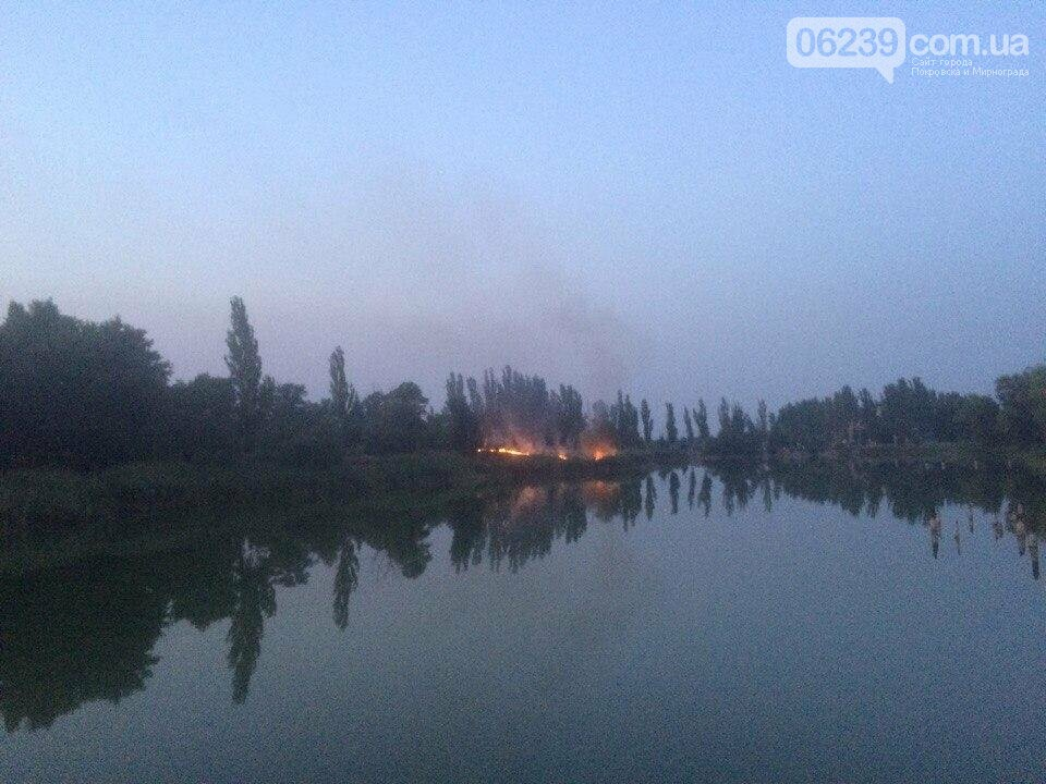 В центре Мирнограда вчера горел сухостой, фото-4