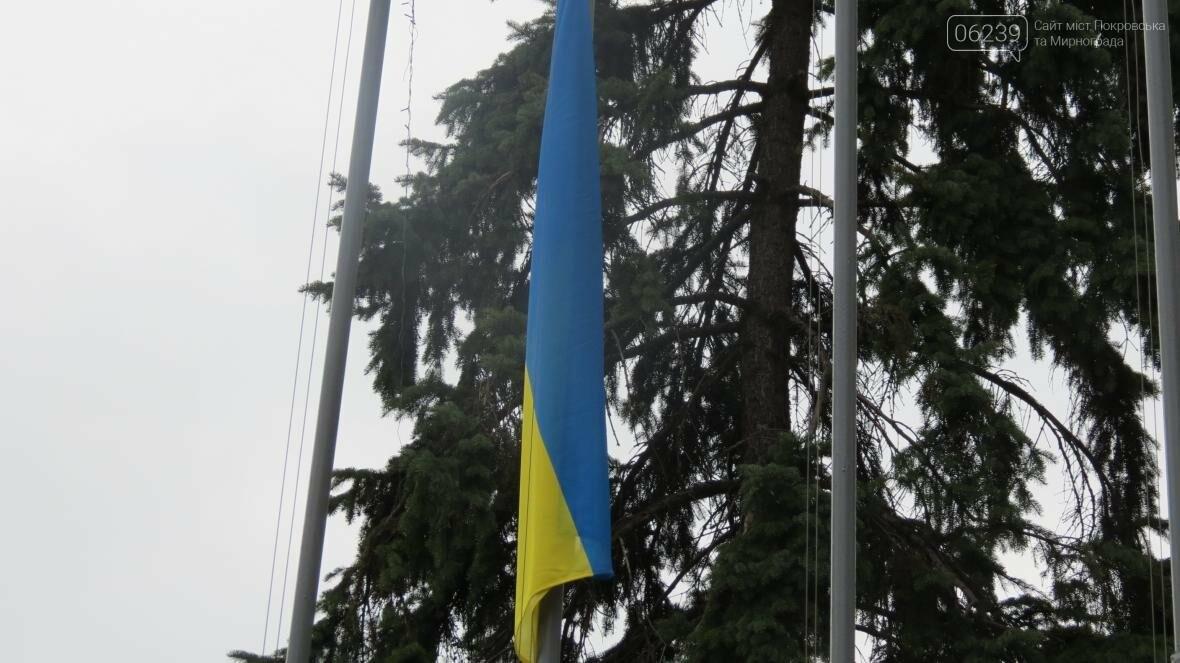 В Покровске отпраздновали День Государственного флага, фото-4