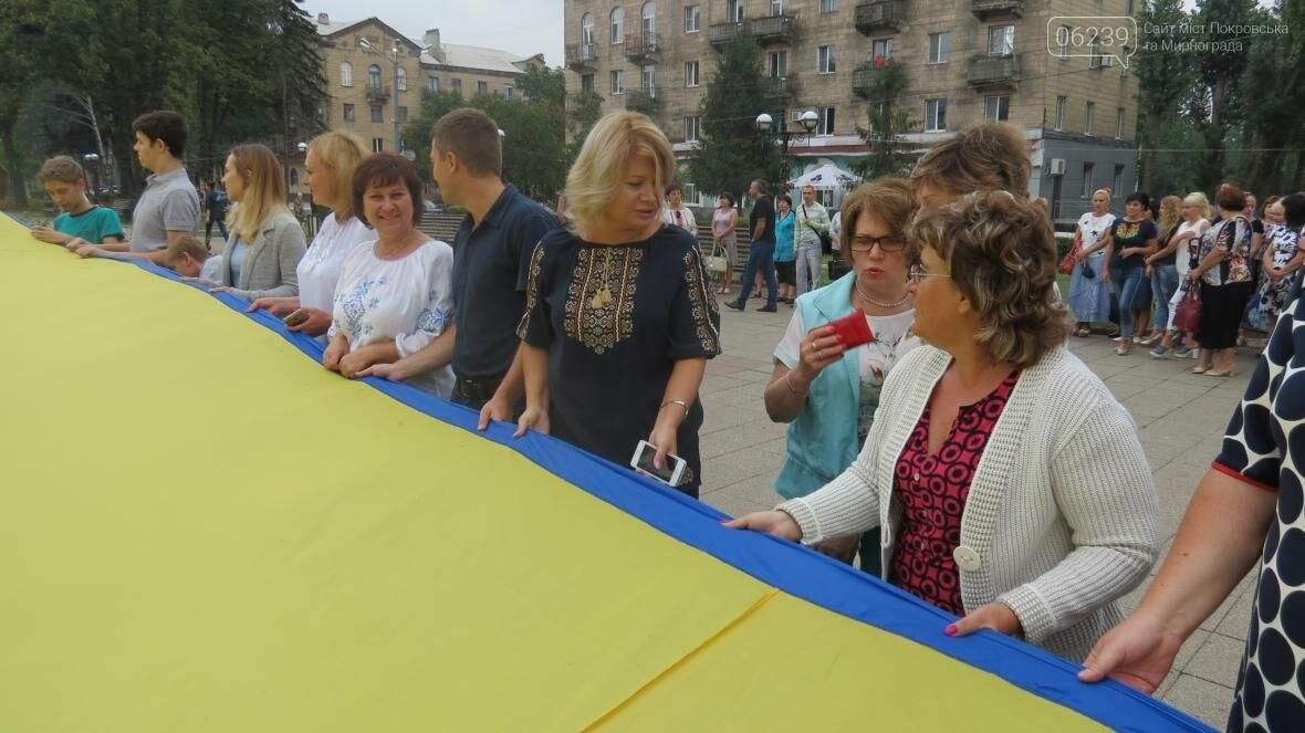 В Покровске отпраздновали День Государственного флага, фото-10