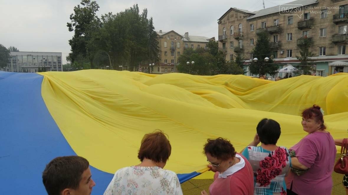 В Покровске отпраздновали День Государственного флага, фото-9