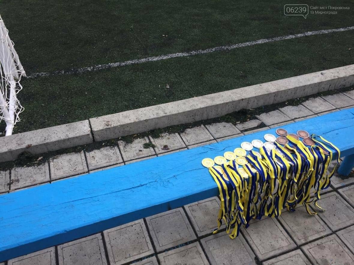 В Покровске состоялось первенство по футболу: госслужащие сразились с силовиками, фото-4