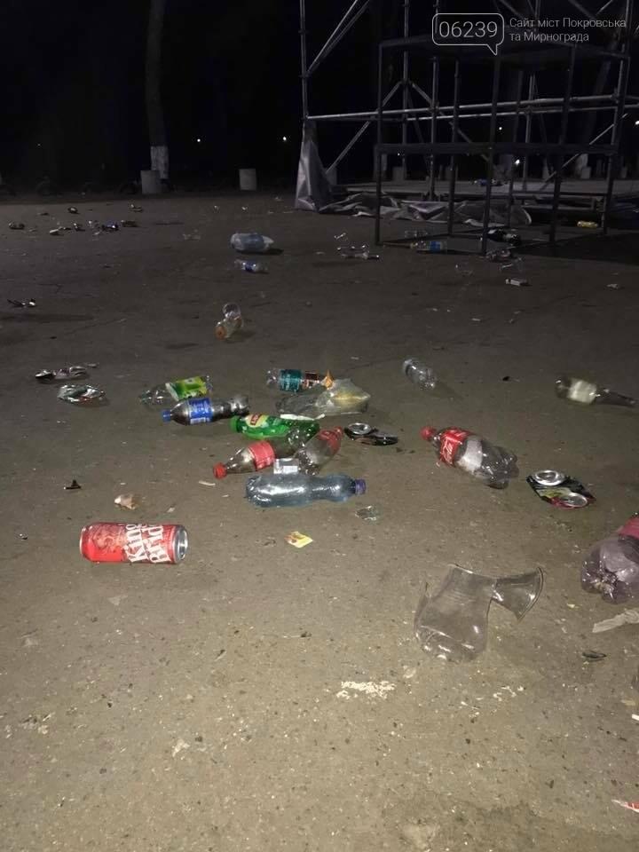В парке Покровска после праздника убирали мусор всю ночь, фото-3