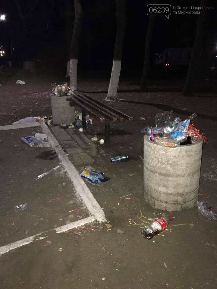 В парке Покровска после праздника убирали мусор всю ночь, фото-1