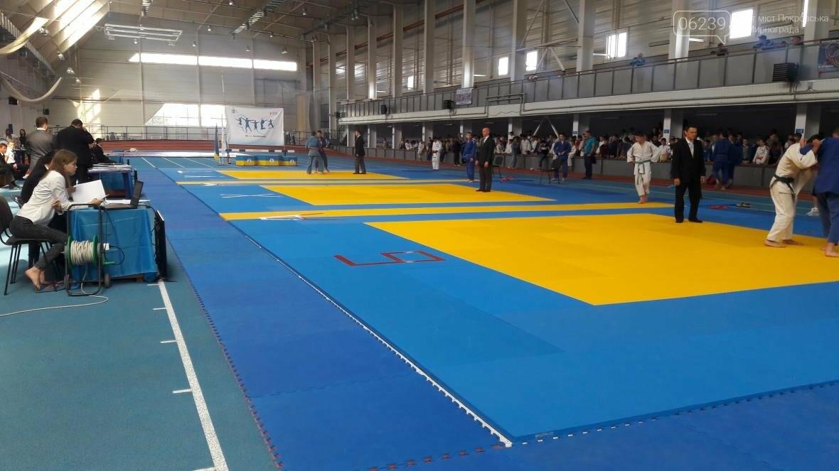 Дзюдоисты Покровска стали победителями и призерами областного чемпионата, фото-1