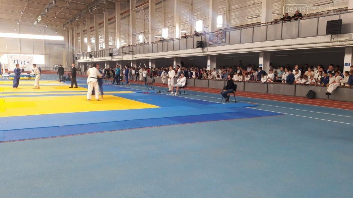 Дзюдоисты Покровска стали победителями и призерами областного чемпионата, фото-2