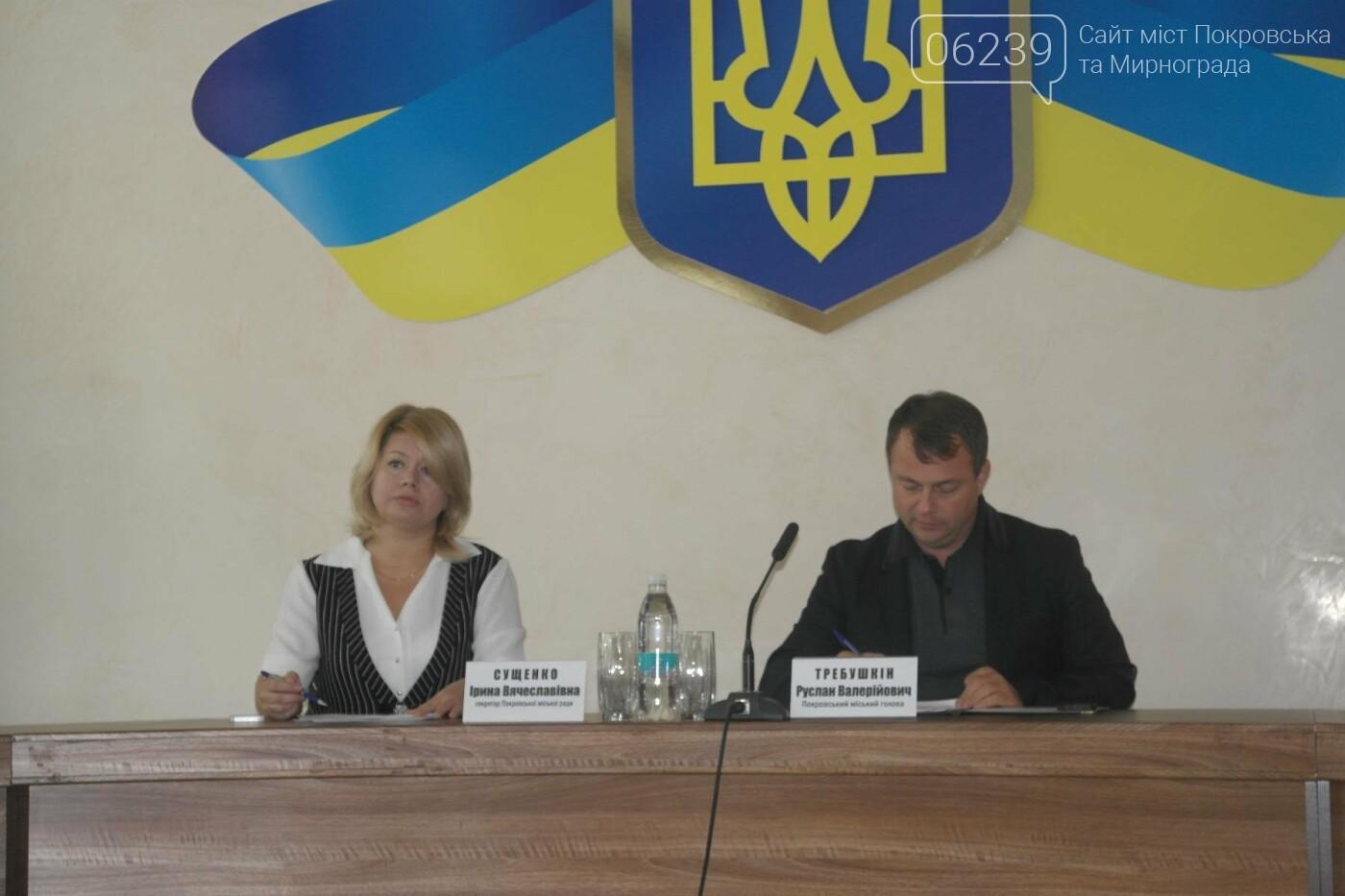 Покровские депутаты перераспределяли бюджетные средства и внесли изменения в ранее принятые решения, фото-3