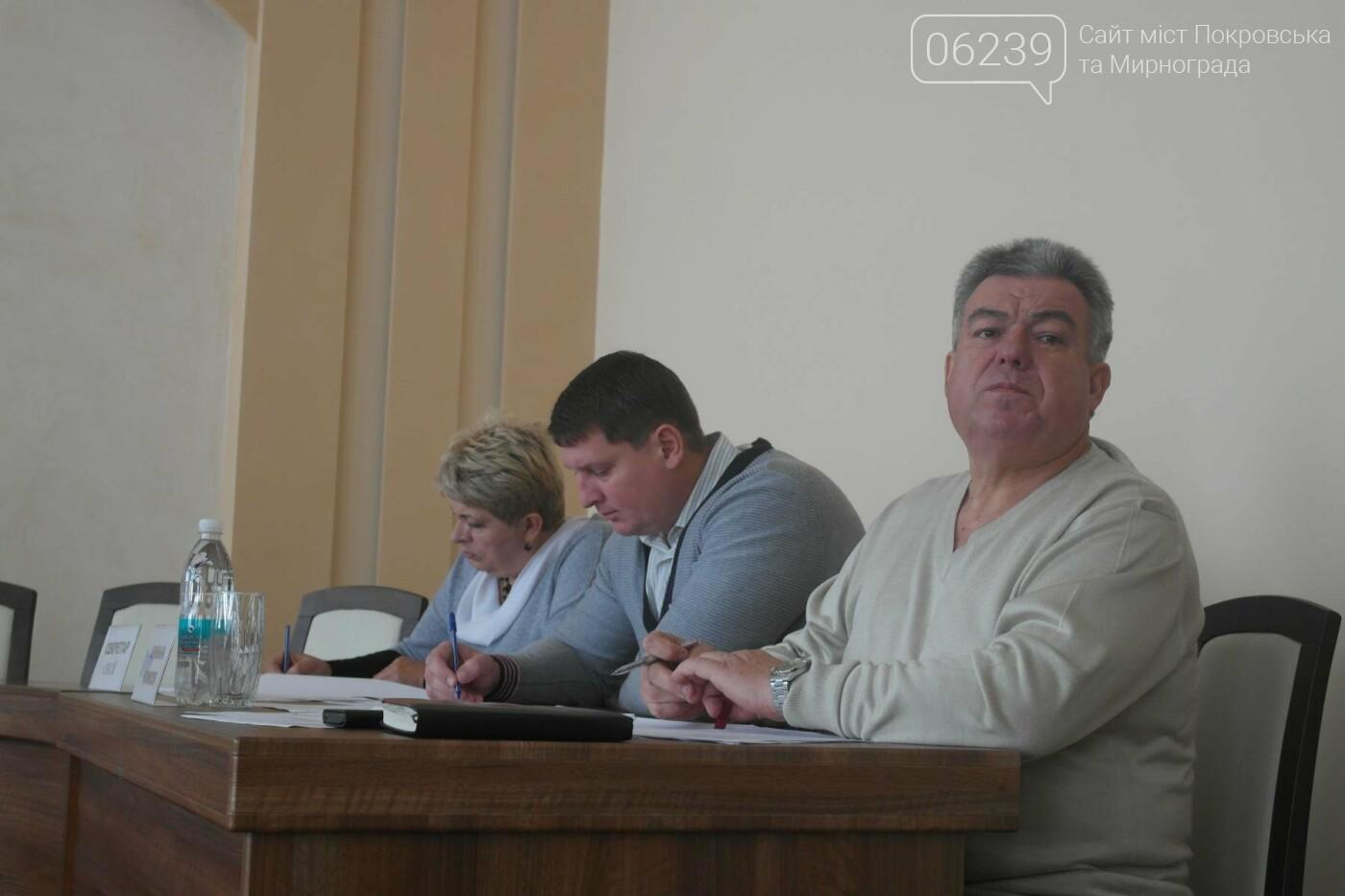 Покровские депутаты перераспределяли бюджетные средства и внесли изменения в ранее принятые решения, фото-4