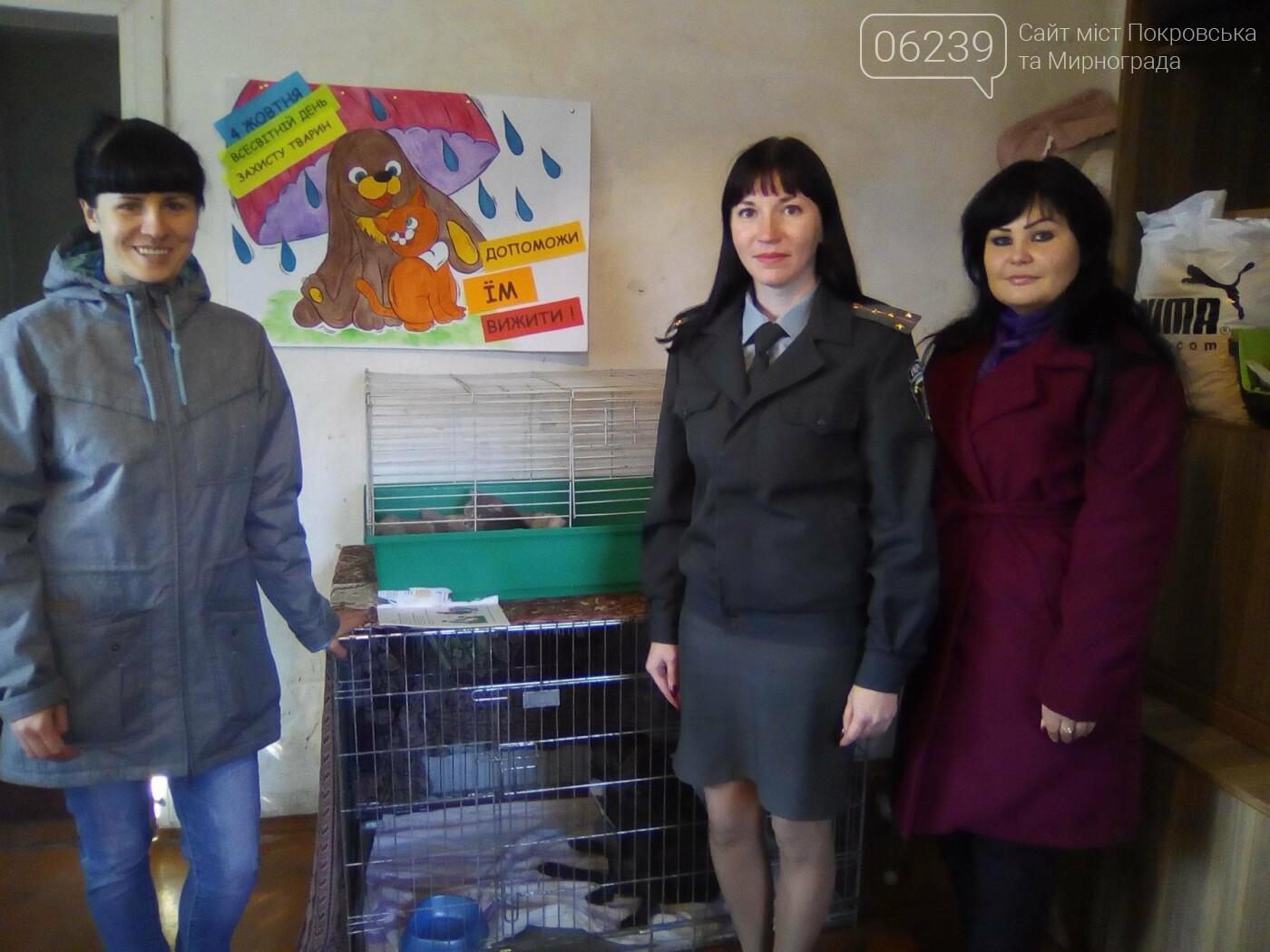 Співробітники Покровського МРВ з питань пробації з підобліковими відвідали «Покровське товариство захисту тварин», фото-1