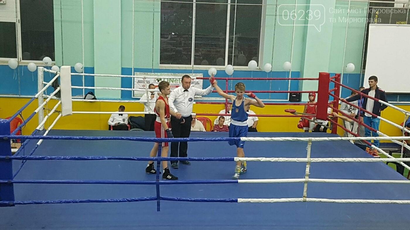 Спортсмены из Покровска заняли призовые места на Чемпионате Украины по боксу, фото-2