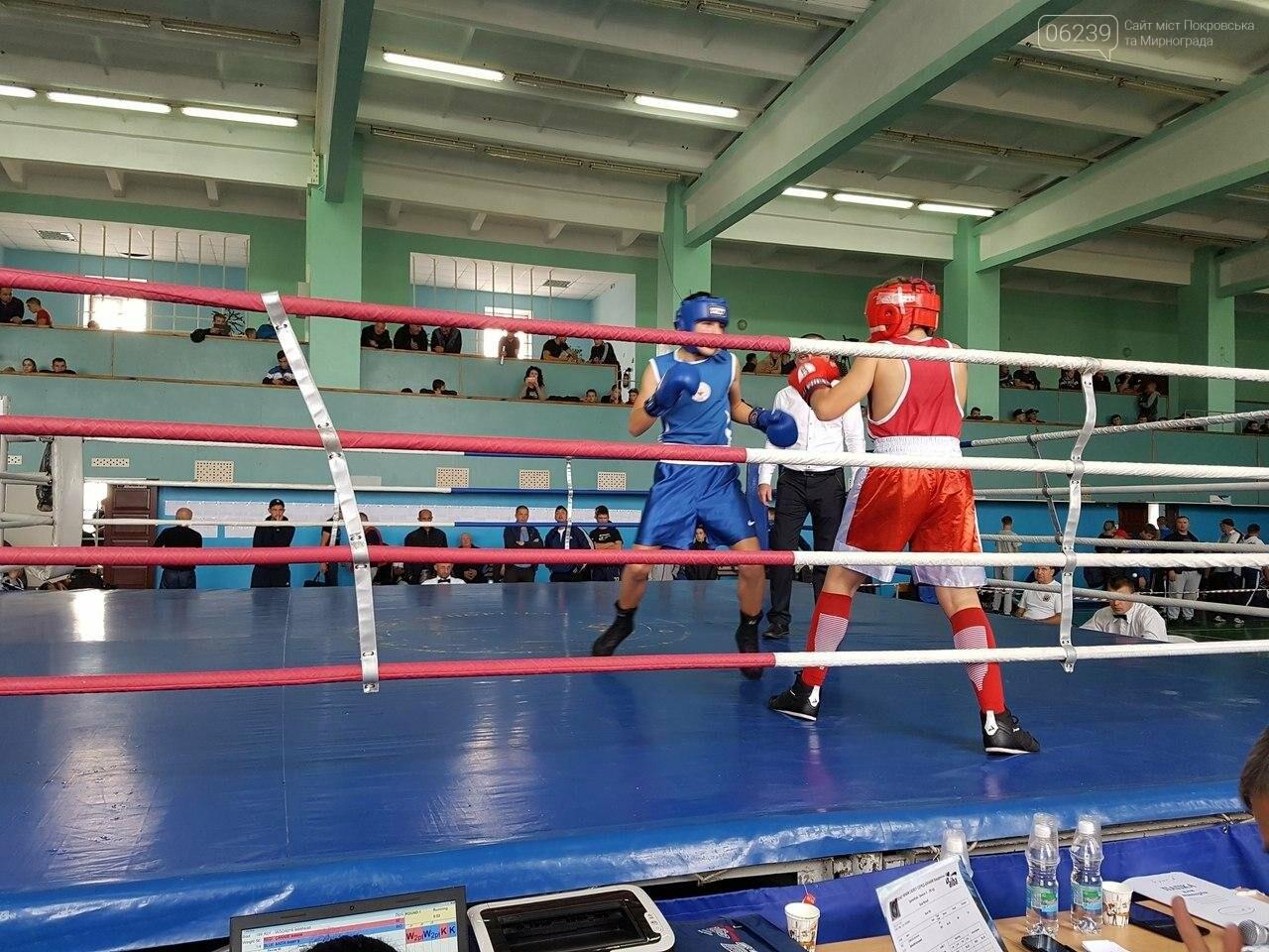 Спортсмены из Покровска заняли призовые места на Чемпионате Украины по боксу, фото-1