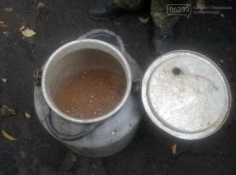 Покровские правоохранители привлекли к ответственности «самогонщицу» из Родинского, фото-3