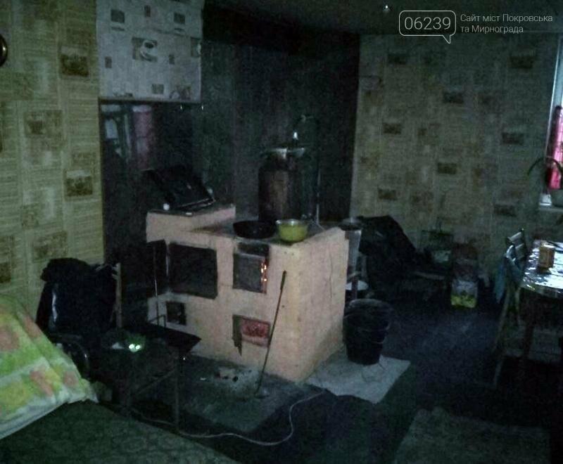 Покровские правоохранители привлекли к ответственности «самогонщицу» из Родинского, фото-2