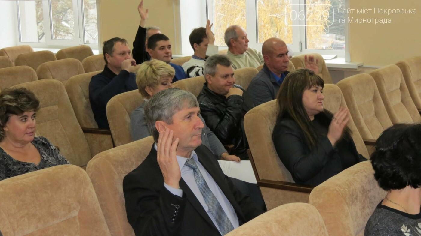 Депутаты Покровска расширили полномочия главврача ЦРБ, фото-2