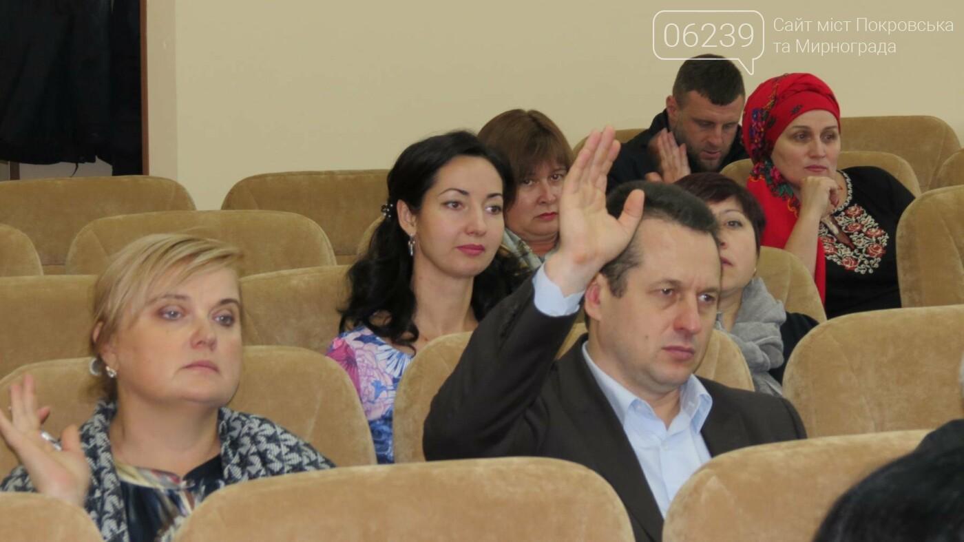 Депутаты Покровска расширили полномочия главврача ЦРБ, фото-3