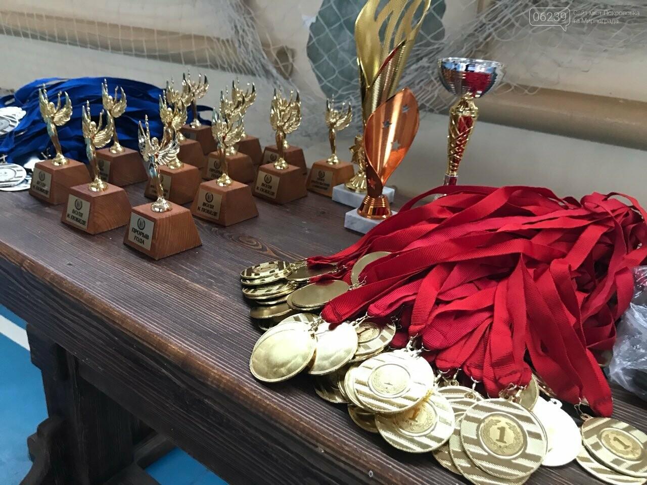У Покровську відбувся Кубок області з чирлідингу та чир спорту, фото-1