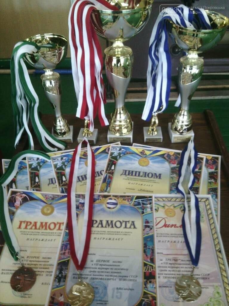 Волейболисты ВК «Покровск» стали лучшими в Луганской области, фото-7