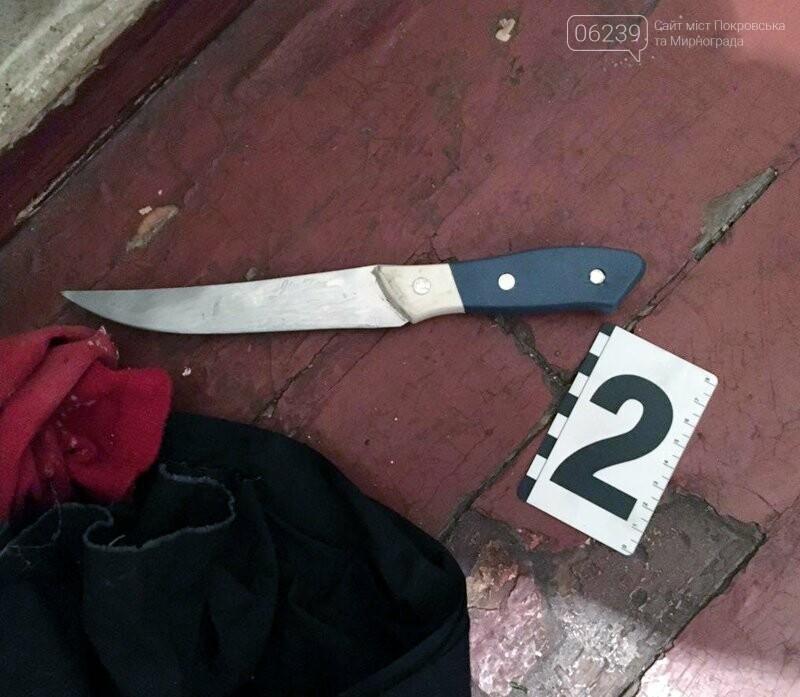 В Мирнограде во время ссоры разъяренный мужчина ударил свою сожительницу ножом, фото-1