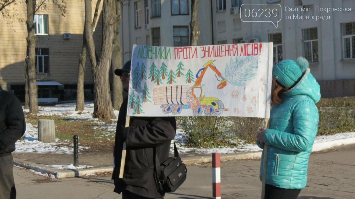 В Покровске на протест вышли работники лесного хозяйства, фото-2