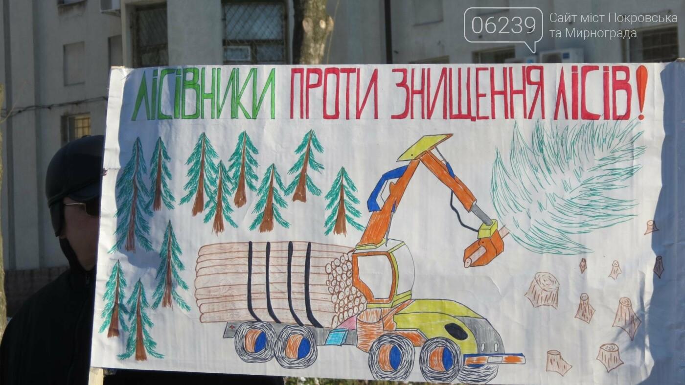 В Покровске на протест вышли работники лесного хозяйства, фото-3