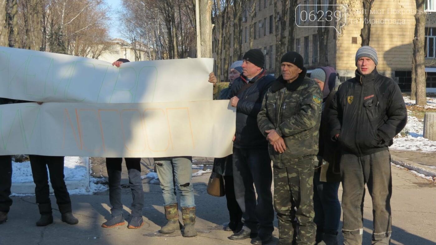 В Покровске на протест вышли работники лесного хозяйства, фото-5