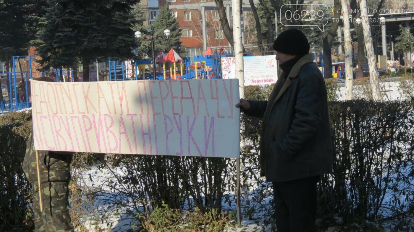 В Покровске на протест вышли работники лесного хозяйства, фото-6