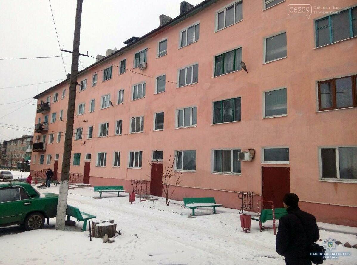 Полицейские воплощают в Мирнограде проект «Безопасный дом», фото-5