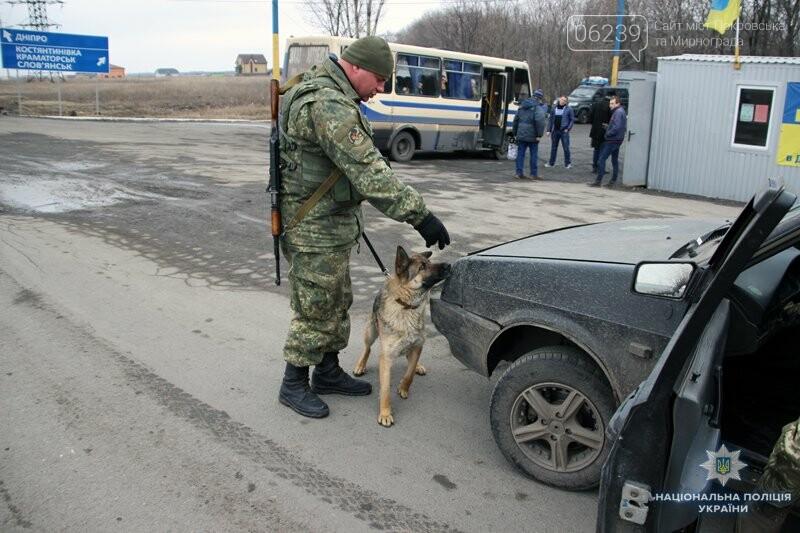 Почему в Покровске полицейские со служебными собаками проверяют поезда и автобусы , фото-3