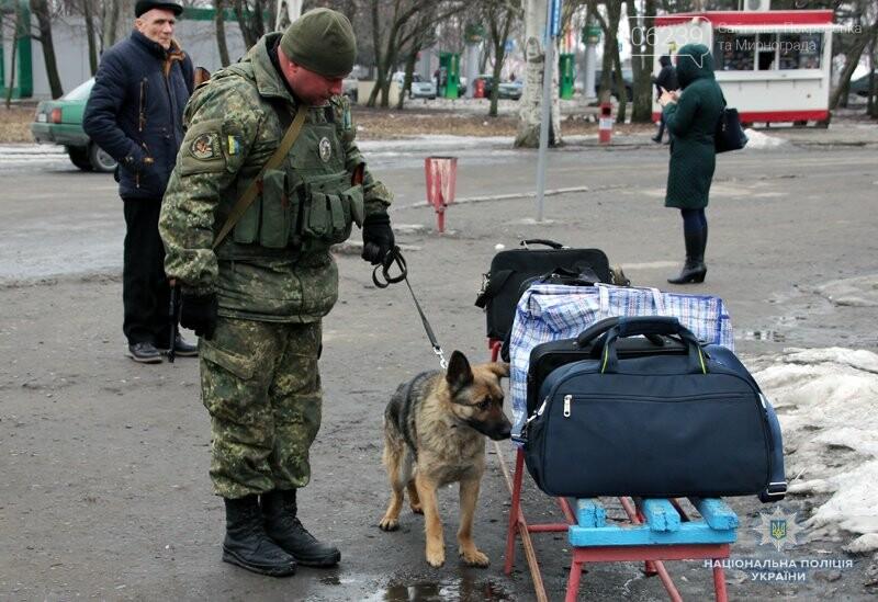 Почему в Покровске полицейские со служебными собаками проверяют поезда и автобусы , фото-4