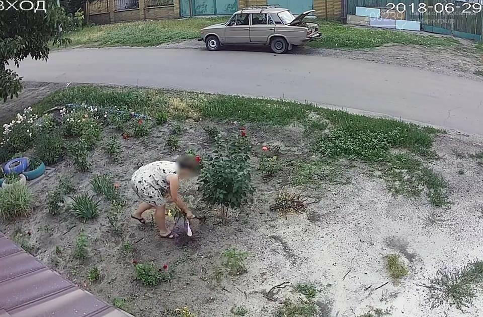 У Покровську затримали жінку, яка під час викрадання квітів «засвітилася» на камерах відеоспостереження, фото-3