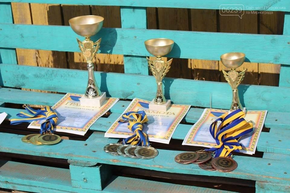 7 червня в місті Мирноград відбувся турнір з паркового волейболу, фото-1