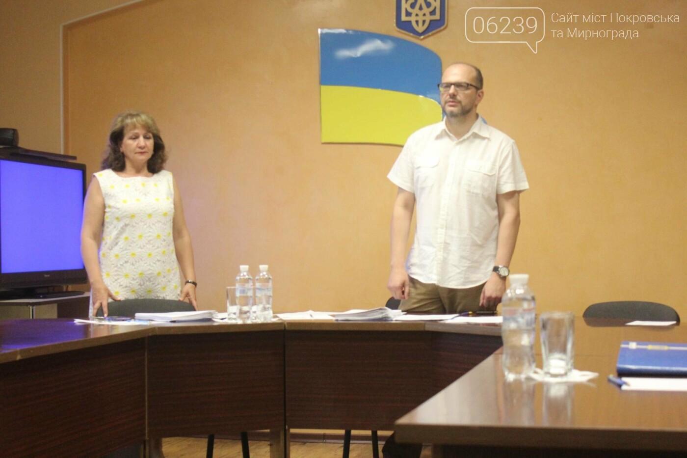 Изменения в бюджете и письмо министру: в Мирнограде состоялась 49-я сессия городского совета, фото-4