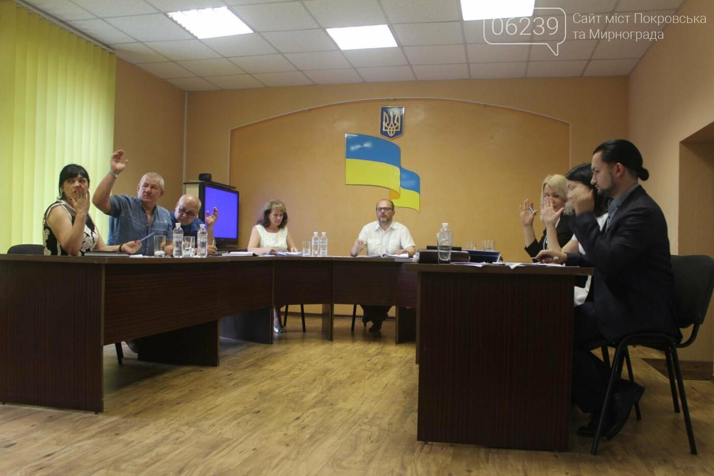 Изменения в бюджете и письмо министру: в Мирнограде состоялась 49-я сессия городского совета, фото-10