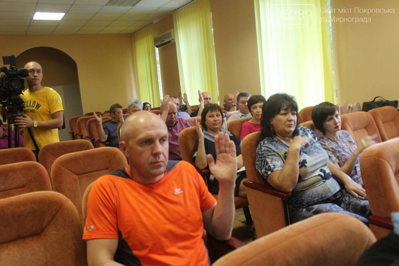 Изменения в бюджете и письмо министру: в Мирнограде состоялась 49-я сессия городского совета, фото-6