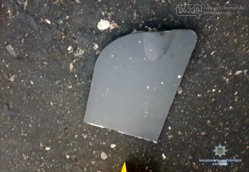 Полиция Донецкой области ищет водителя, который сбил насмерть женщину под Добропольем и скрылся, фото-1