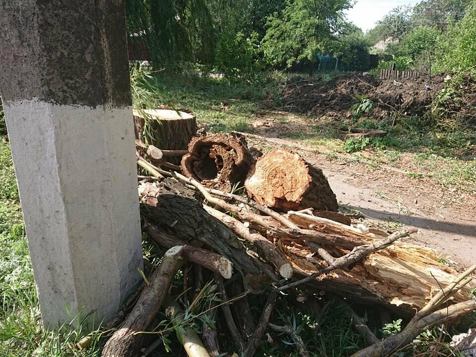 В Мирнограде проходят работы по расчистке балки и сети ливневой наружной канализации , фото-5
